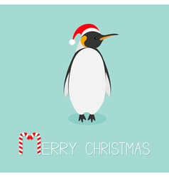 King Penguin Santa red hat Emperor Aptenodytes vector
