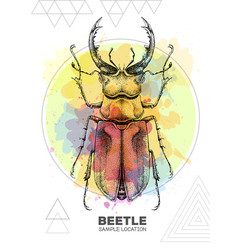 realistic hand drawing stag beetle vector image