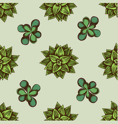 Seamless pattern with hand drawn colored succulent vector