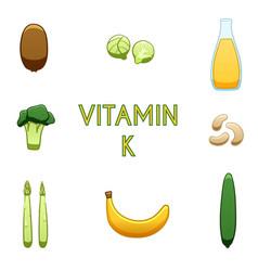 Vitamin k products vector