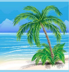 beautiful tropical beach and palm tree vector image