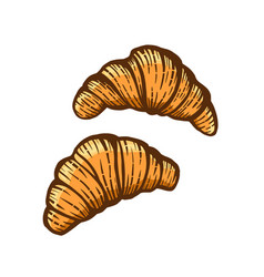 Hand drawn of croissants vector