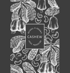 Hand drawn sketch cashew design template organic vector