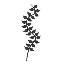 Kelp plant isolated icon vector