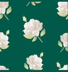seamless background white roses vector image