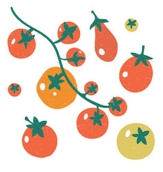set red tomatoes a branch tomatoesset with vector image