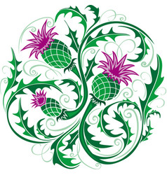 stylized image of a thistle vector image