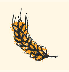 Ear wheat craft sketch isolated vector
