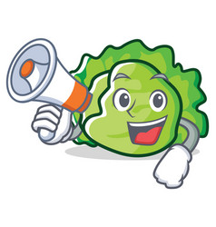 with megaphone lettuce character cartoon style vector image vector image