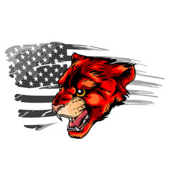 Embroidery tiger head and rippled american flag vector