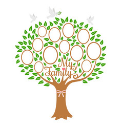 Family tree generation genealogical tree with vector