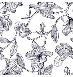 Flowering magnolia hand drawn black and white vector