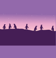 lined penguin on hil scenery silhouette vector image