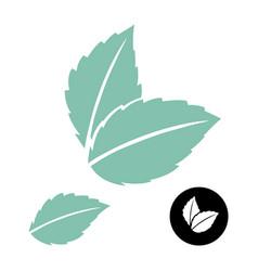 Mint leaves logo green leaf blue mint vector