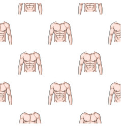 Muscular torso icon in cartoon style isolated on vector
