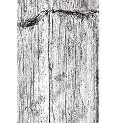 vertical dry wood vector image