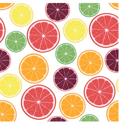 With citrus oranges lemons vector