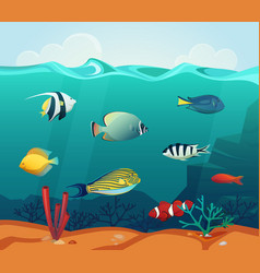 ocean colourful fishes with corals at bottom vector image