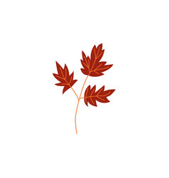 autumn brown branch of leaves isolated on white vector image