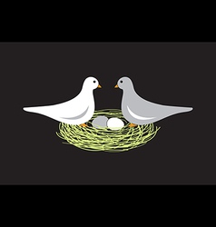 Birds in nest with eggs vector