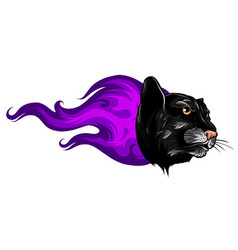 black panther attack in fire and flames vector image