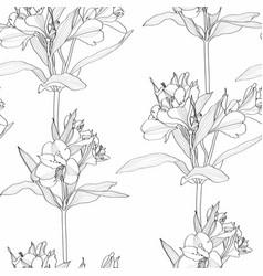 Black white line alstroemeria lilies flower vector