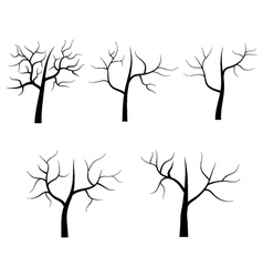 Dry tree on white background vector