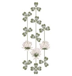 Flowers of clover vector