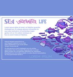 sea underwater life background vector image