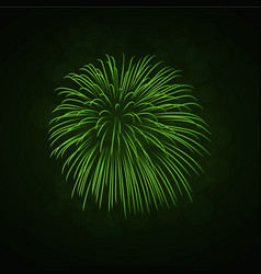 beautiful green firework bright firework isolated vector image