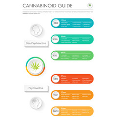 Cannabinoid guide vertical business infographic vector