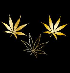 cannabis cannabis leaf set vector image