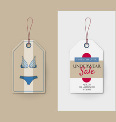 cardboard price tag with blue lingerie vector image