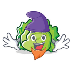 Elf lettuce character cartoon style vector