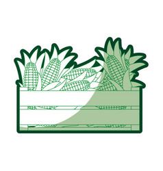 Green silhouette of wooden box with corncobs vector
