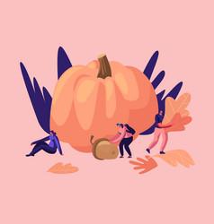 outdoors activities in autumn season happy male vector image