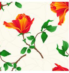 seamless texture flower orange rose vintage vector image