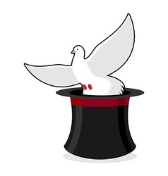Dove and hat magician Black cylinder and a white vector image
