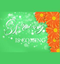 Spring lettering design logo decorative vector