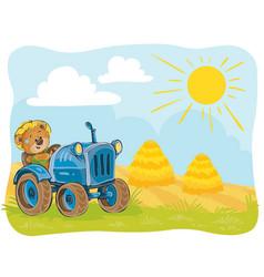 A teddy bear tractor driver vector
