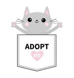 adopt me gray cat hug in pocket pink heart vector image