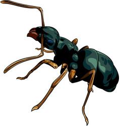 cartoon ant worker vector image
