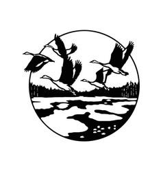 Flock geese ducks wildlife wildlife stencils vector