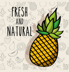 fresh and natural pineapple diet fruits background vector image