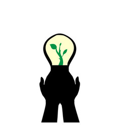 hands holds lamp sprout plant vector image