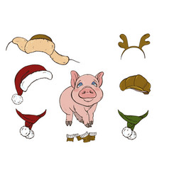 pig and her clothes vector image