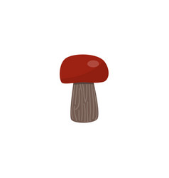 porcini mushroom with brown cap isolated on white vector image