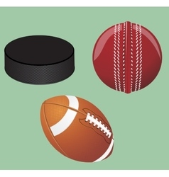 Set of sport equipment vector image