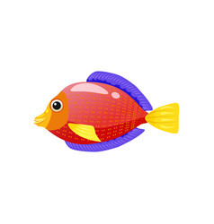 Tropical exotic red discus fish bright colorful vector