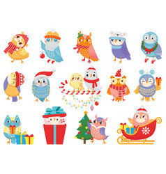 Winter owl cute christmas birds owls in scarf vector